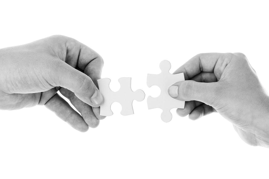 puzzle_mentor_program